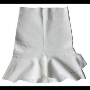 BCBGMaxAzria Fit and Flare Skirt